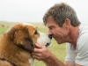 'A Dog's Purpose' Producer Explains What Happened on Set | ABC News | January 23, 2017